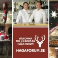 Haga Forums Julbord